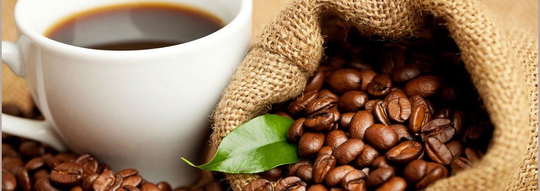 Topkvalitet - Fairtrade og Økologi